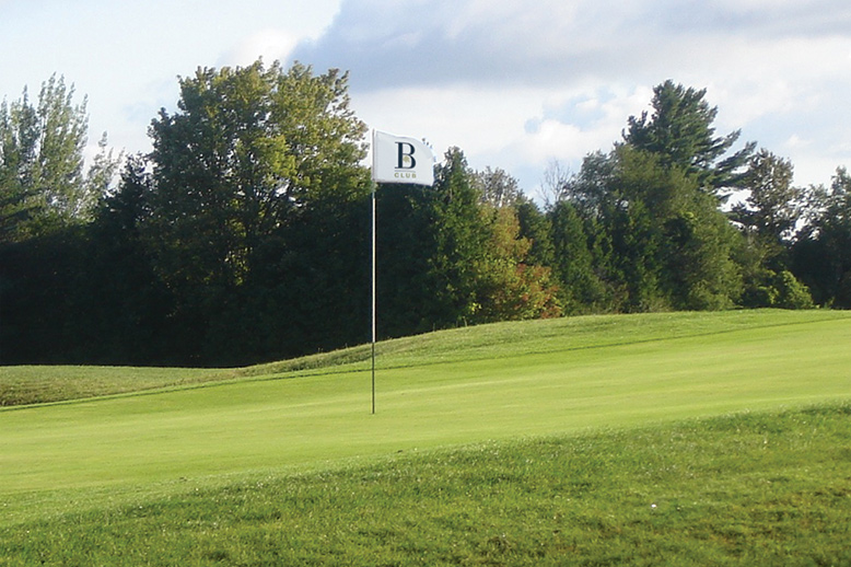 Braestone Club flag in the green on a Golf Course - Georgian International