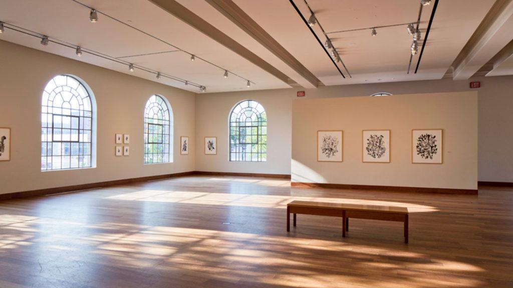 Gallery Room at MacLaren Art Centre - Georgian International